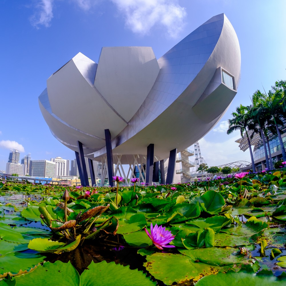 Singapore-5-3