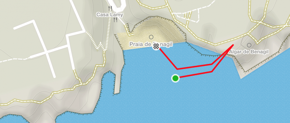 Benagil Sea Swim